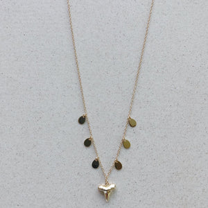 Shark Tooth Small with Coins Necklace