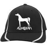 Arabian STC16 Flexfit Colorblock Cap