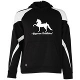 American Saddlebred Design 2 229646 Holloway Youth Colorblock Hoodie