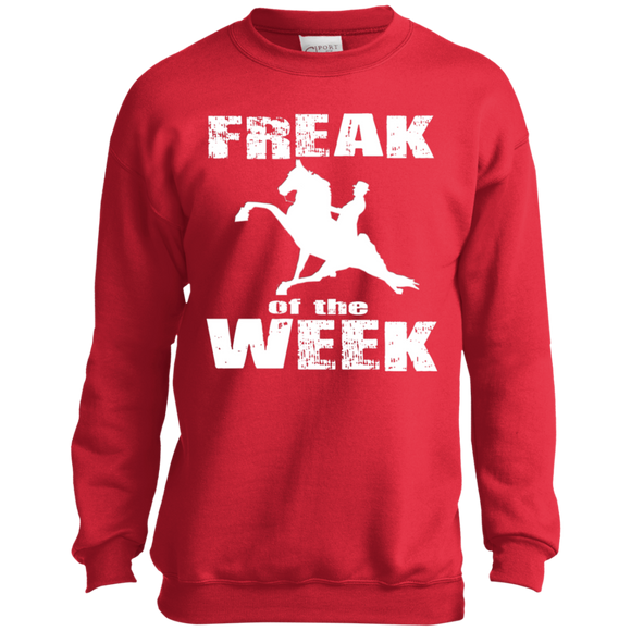 Freak Of The Week PC90Y Port and Co. Youth Crewneck Sweatshirt