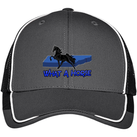 What A Horse 2020 C904 Colorblock Mesh Back Cap