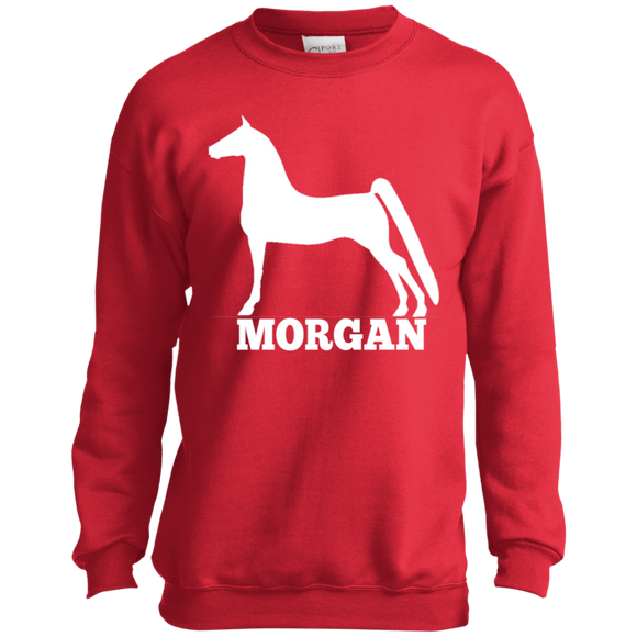 Morgan PC90Y Port and Co. Youth Crewneck Sweatshirt