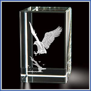 Paperweight - Eagle/Landing