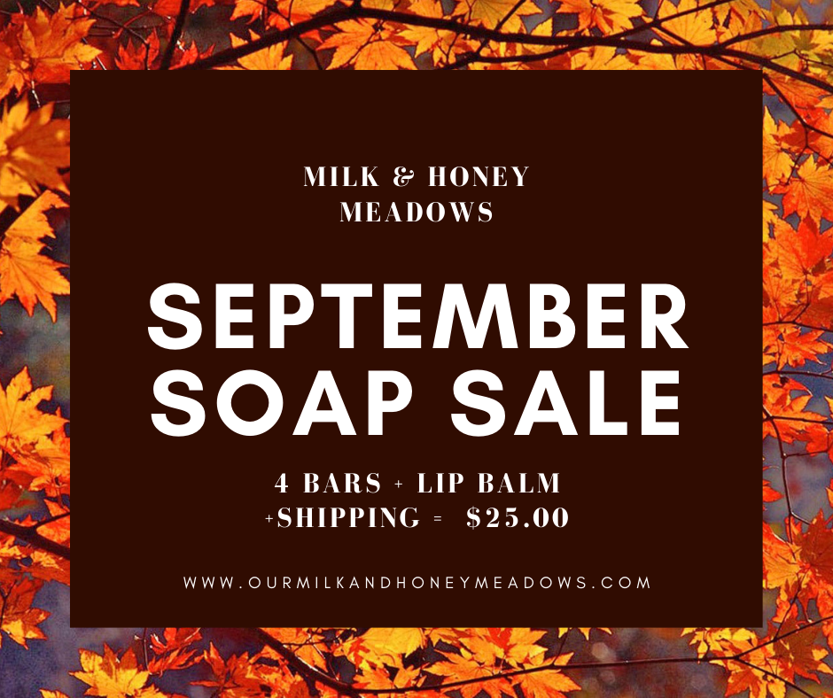 September Soap Sale
