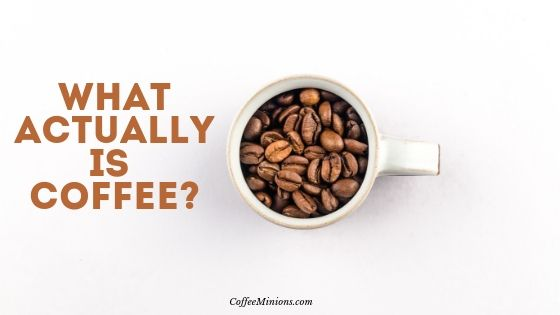 What actually is Coffee?