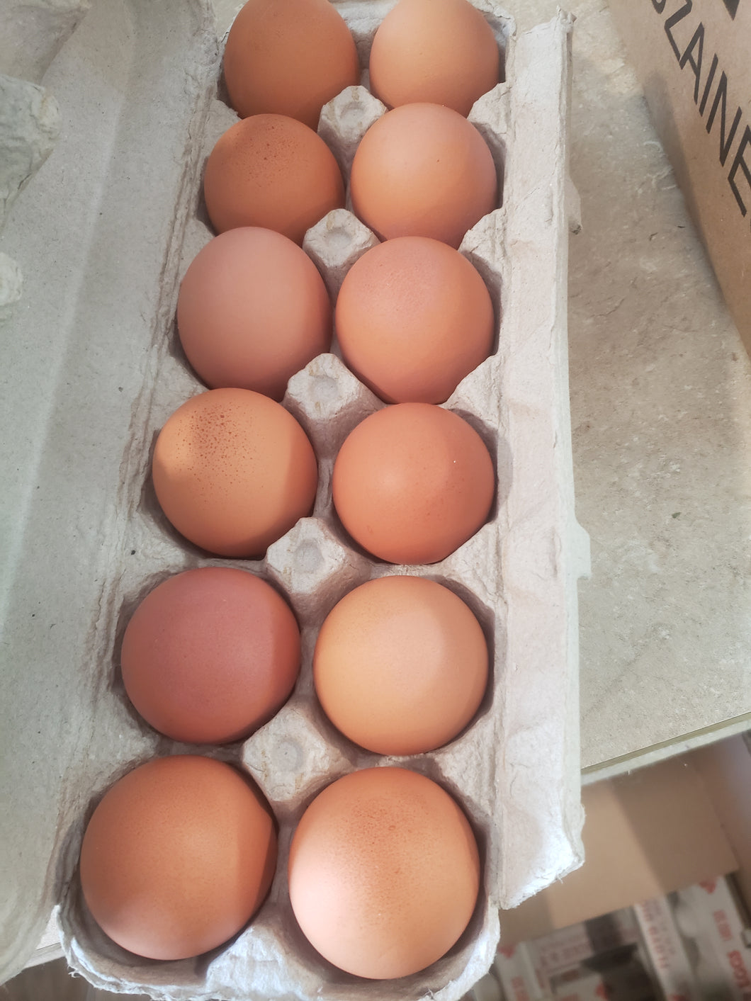 Large Brown - Farm Fresh Eggs