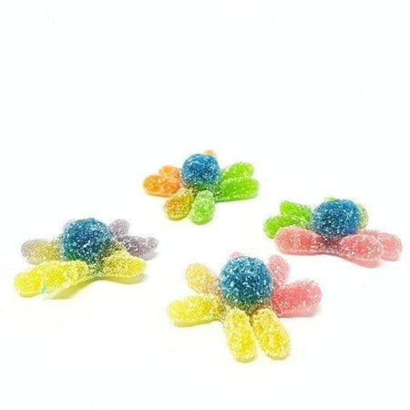 My Octopi Jelly Gummies - 1Kg pack FINI - caramellina.com
