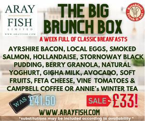 The BIG Brunch Box