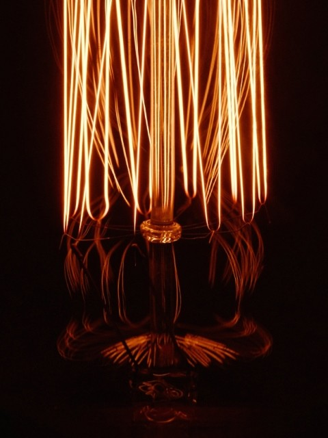Vintage Bulb-Dimwit Light Bulb No.5 - Timeless Design