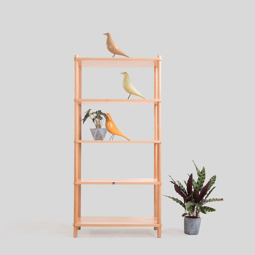 Savannah II 5 Tier Shelve - Timeless Design