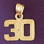 Number 30 Charm Pendant 14k Gold