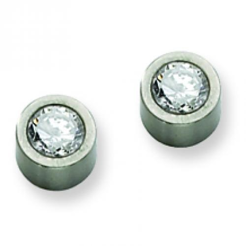 Stainless Steel Satin CZ Post Earrings