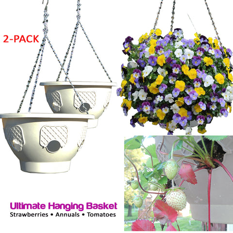 Smart Spring Ultimate Hanging Basket - 2-Pack - Gardennaire