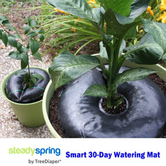 Smart Spring Smart Watering Mats for Containers