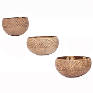Coconut Shell Bowl | BOHO