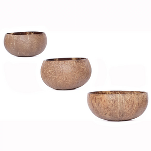 Coconut Shell Bowl | NOMAD