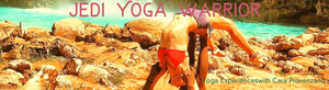 1 Hour Private Yoga Class | In Person or Digital (up to 3 people)