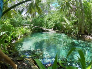 Wanderlust Woman:The Yucatan Experience | 7 nights, 8 days