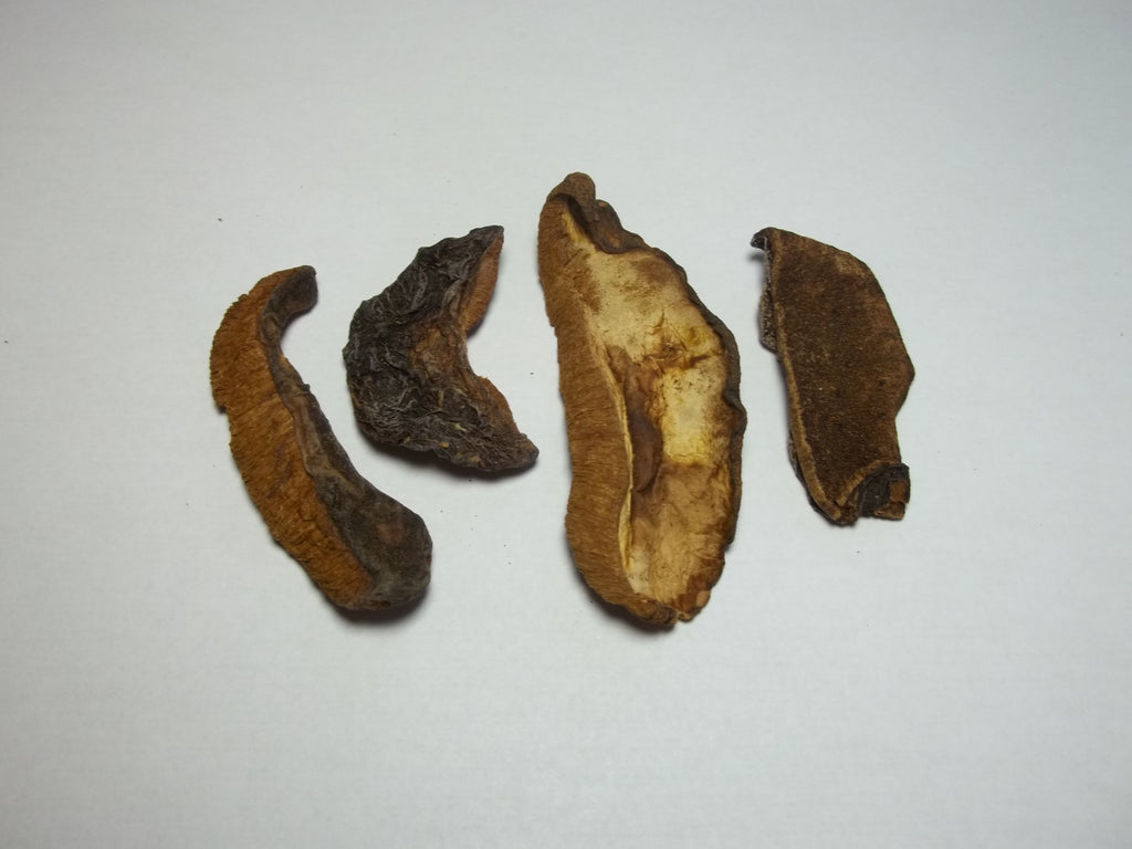European Boletes Mushrooms 2oz