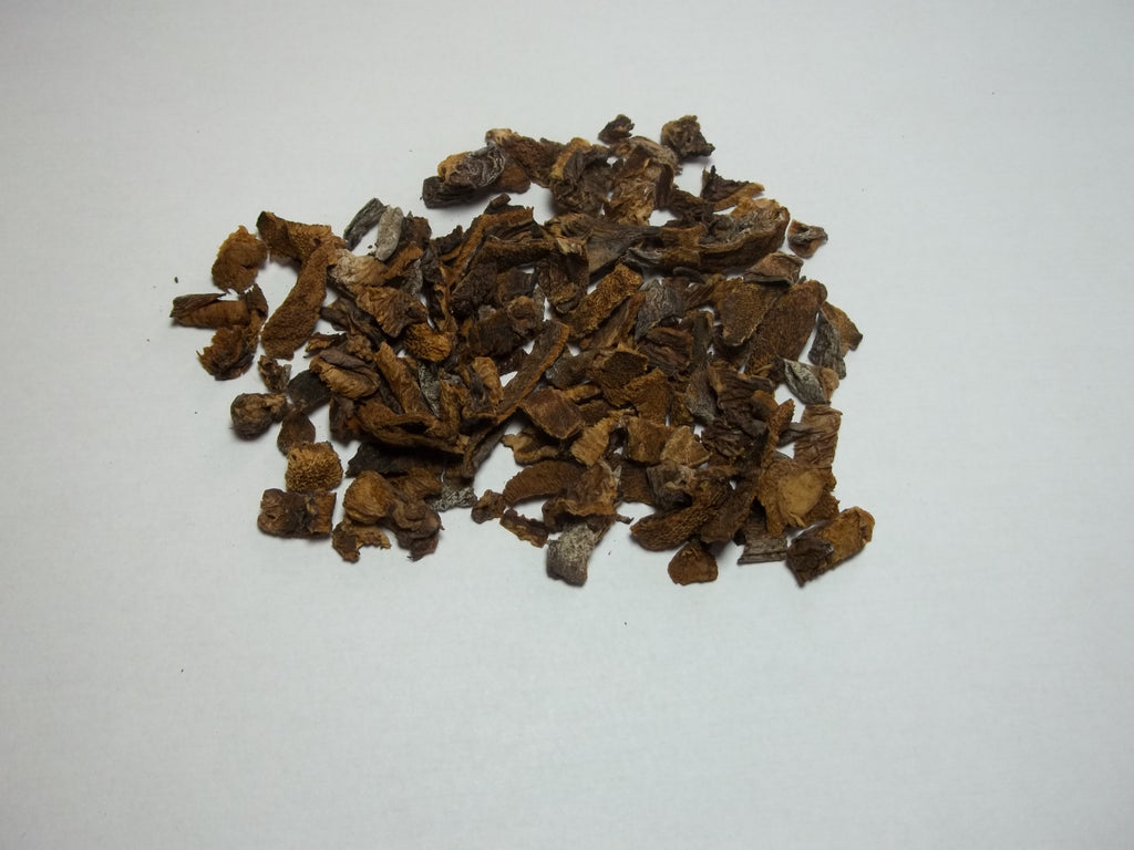Kibbled European Boletes Mushrooms 4oz