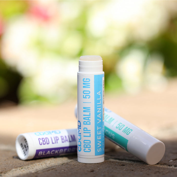 cbdMD 50mg Broad Spectrum CBD Lip Balm