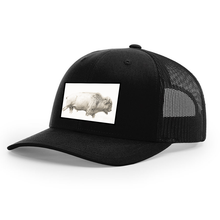Load image into Gallery viewer, Ronnie Dunn Buffalo Hat