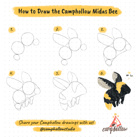 How to Draw the Camphollow Midas Bee