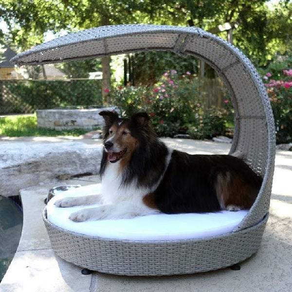 Outdoor dog loungers