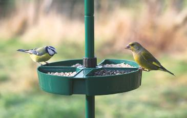 Cj Bird Buffet System - Selection Dish (attaches To Pole)