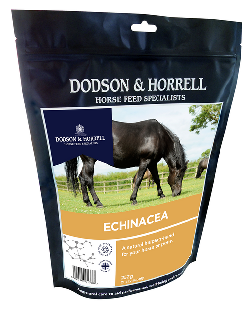 Dodson and Horrell Echinacea for Horses - 252g