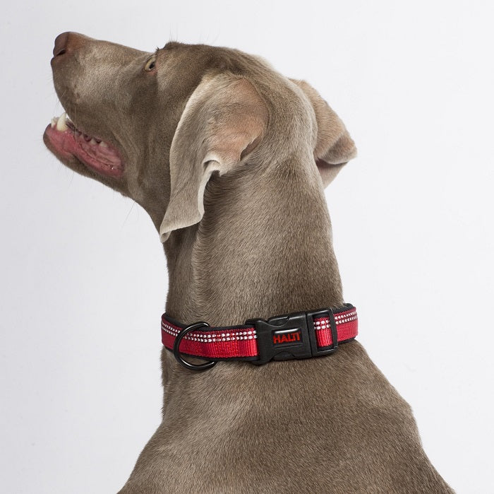 Halti Collar for Dogs