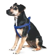 Ancol Nylon Padded Reflective Harness