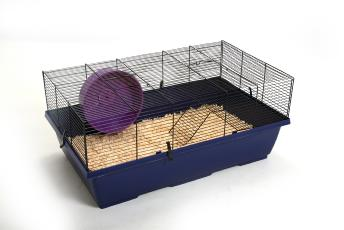 Rat Cage With Wheel & Floor 80x50x34cm