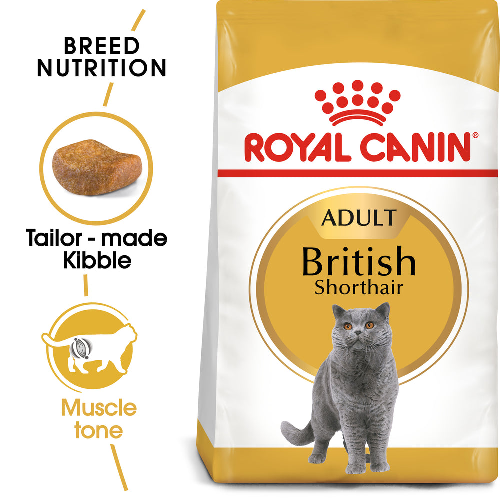 Royal Canin Adult British Shorthair Dry Cat Food - 10kg