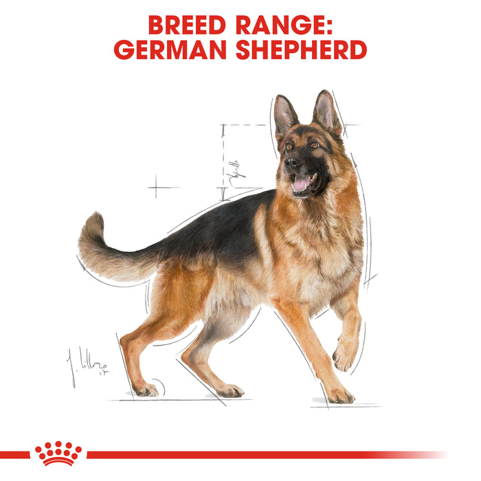 Royal Canin Adult German Shepherd Dry Dog Food - 3kg