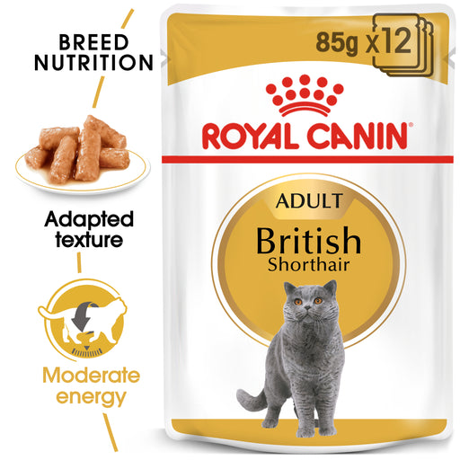 Royal Canin Feline Adult British Shorthair Wet Cat Food Pouches in Gravy - 12 x 85g