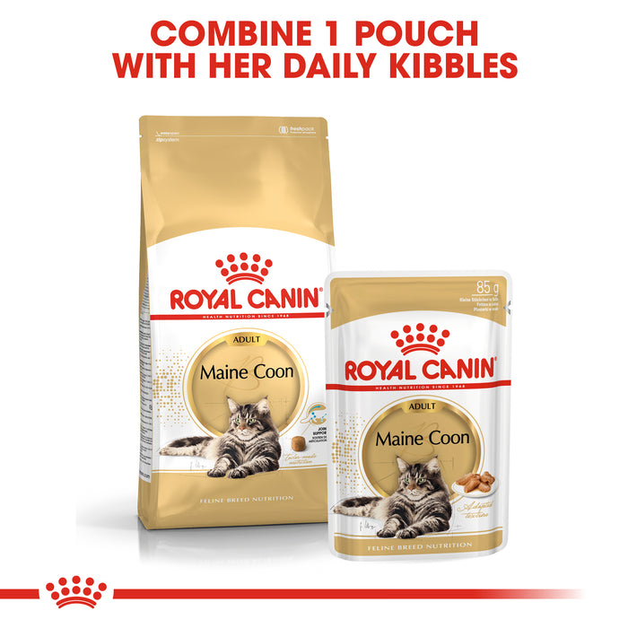 Royal Canin Maine Coon Dry Adult Cat Food - 10kg