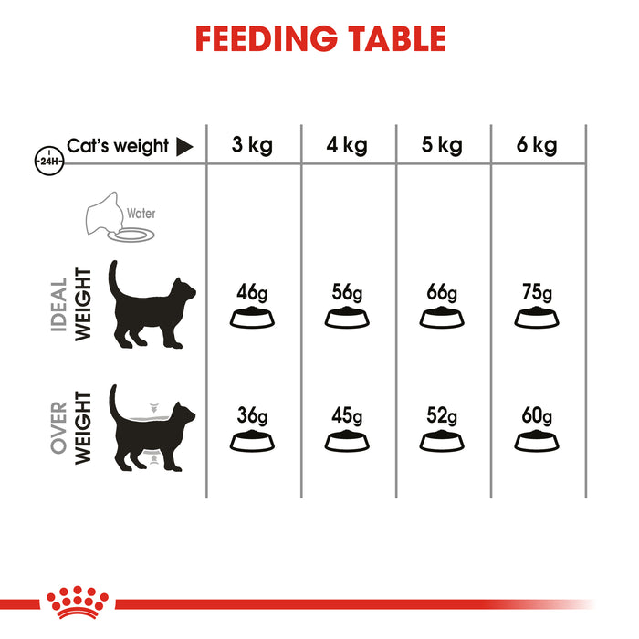 Royal Canin Oral Care Dry Adult Cat Food - 8kg