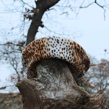 Load image into Gallery viewer, Winter hat in Cheetah Animal Print