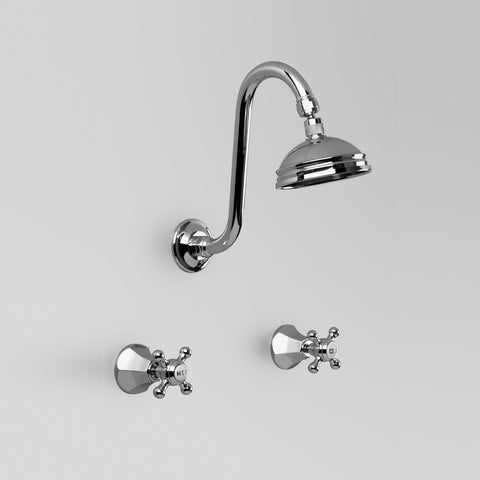 Classic Shower Set 100mm ball joint rose