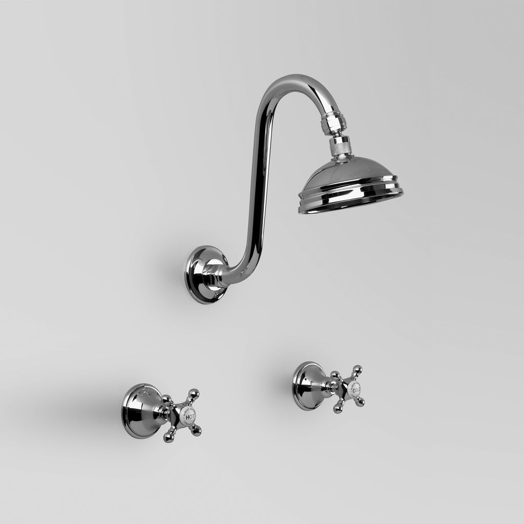 - Classic Edwardian Shower Set with 100mm ball joint rose