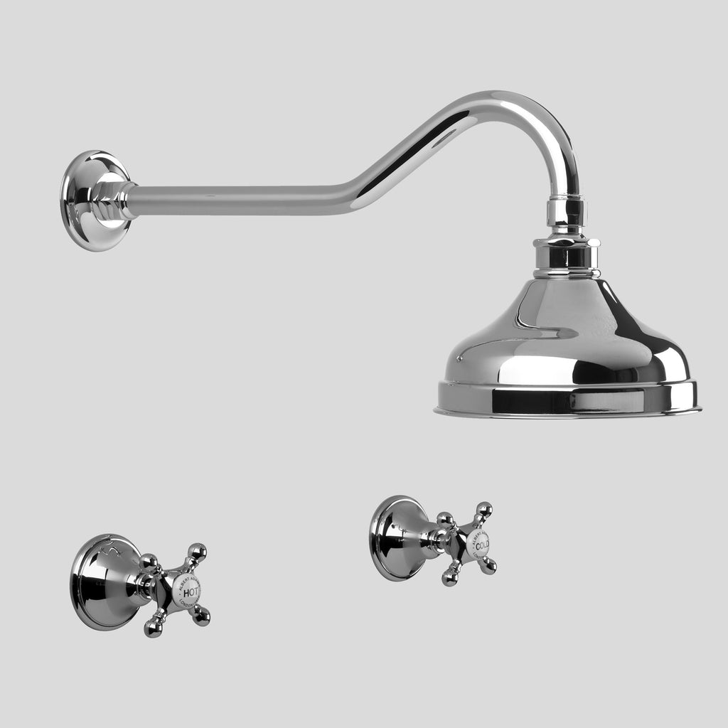 Edwardian -  Classic Edwardian Shower Set with 150mm ball joint rose