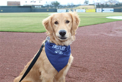 Columbia Fireflies Navy Dog Bandana