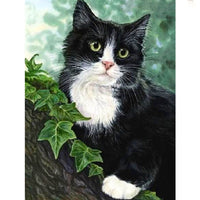 5D Diamond Painting cat Paint with Diamonds Art Crystal Craft Decor AH2067