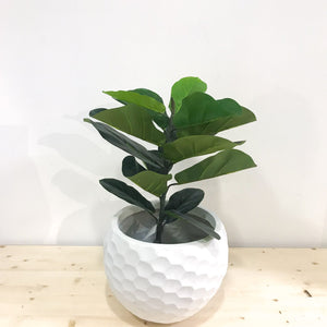 A two-feet tall, artificial fiddle fig tree in a white pot