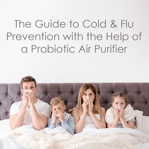 The Guide to Cold & Flu Prevention with the Help of a Probiotic Air Purifier