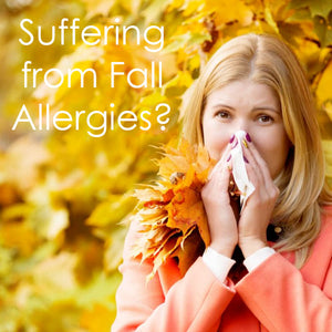 How Can BetterAir Help Combat Allergies in the Fall