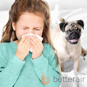 How to Relieve Allergies with an Air Purifier for Pet Dander