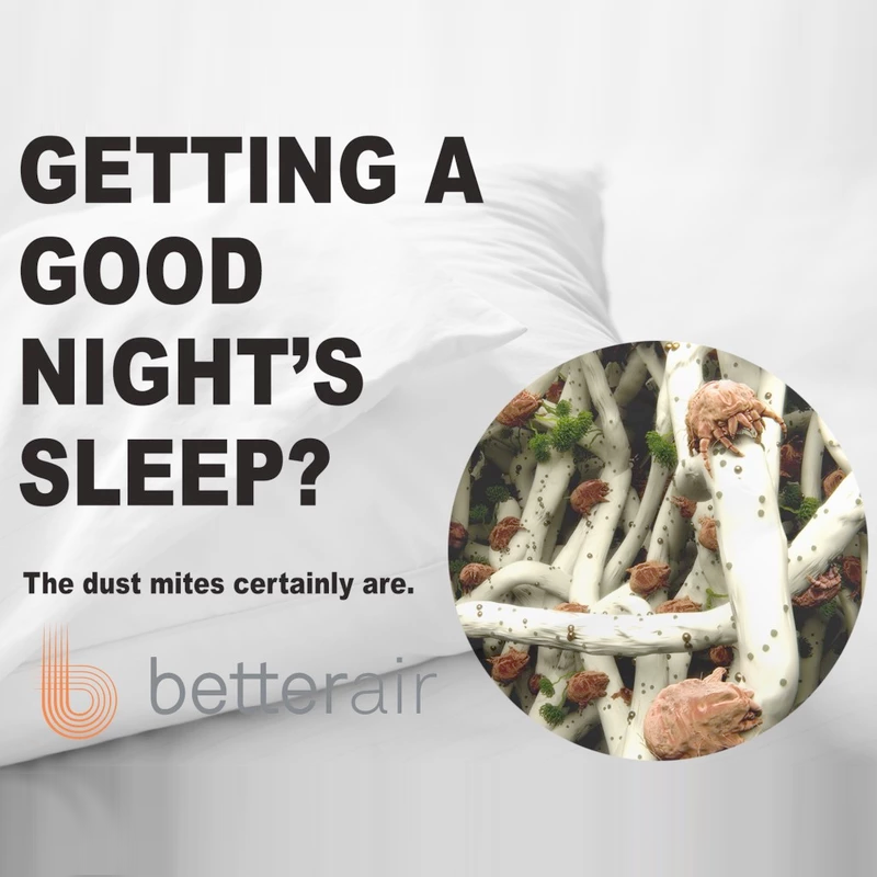 Are You Getting a Good Night's Sleep?