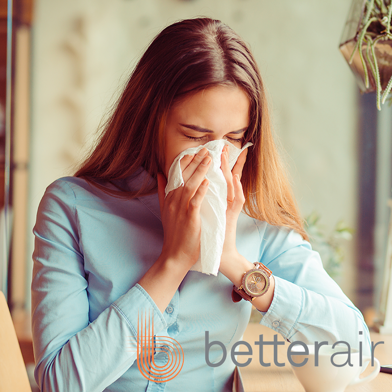 What is the Best Air Purifier for Allergens?